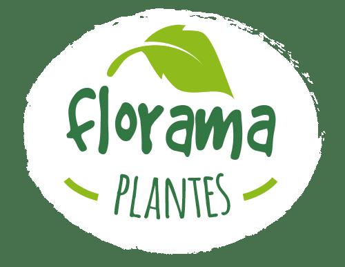 Floramaplantes